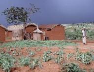 Gouvernance foncière et investissements responsables