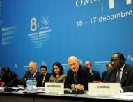 Commerce, développement et environnement. L'impossible trilemme du régime OMC